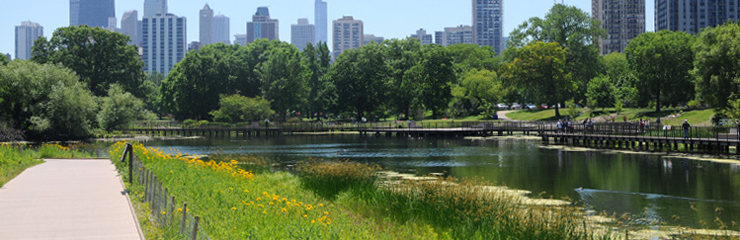 wrd environmental sustainable results nature boardwalk at